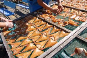 笹川流れ 魚の天日干し