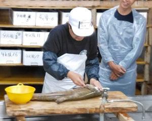 鮭の下処理を指導